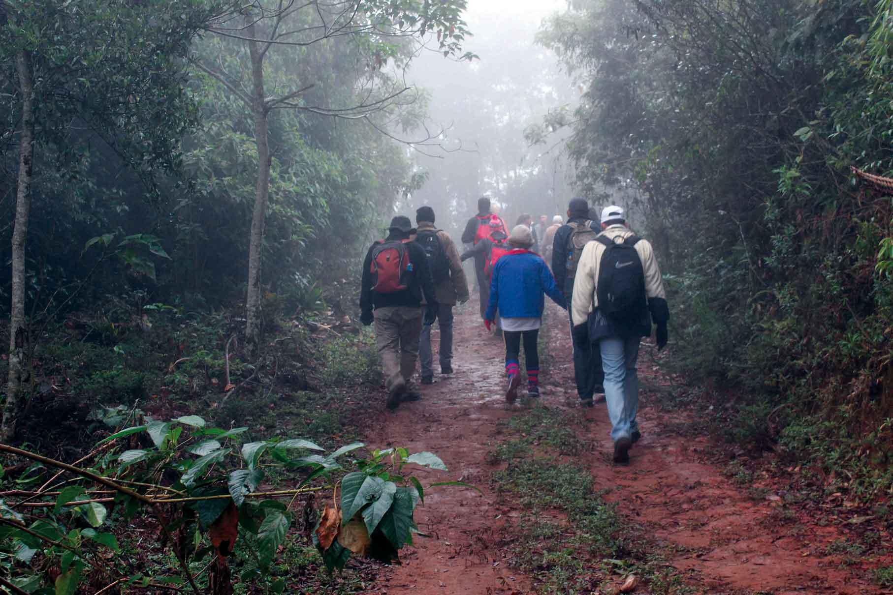 Piquete-Esporte-Trekking-Pico-dos-Marins-Troupe-da-Trilha-Monitores-Ambientais-bx