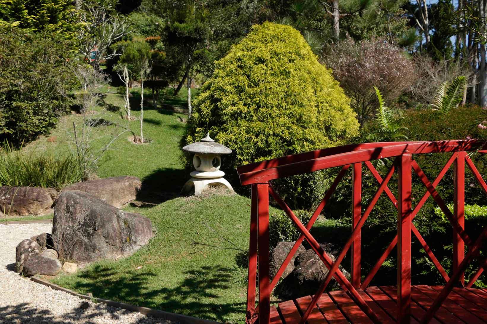 Santo-Antonio-do-Pinhal-Meio-Ambiente-Jardim-dos-Pinhais-_MG_5864-bx