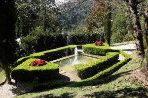 Santo-Antonio-do-Pinhal-Meio-Ambiente-Jardim-dos-Pinhais-_MG_5866-bx