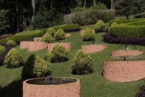 Santo-Antonio-do-Pinhal-Meio-Ambiente-Jardim-dos-Pinhais-_MG_5878-bx