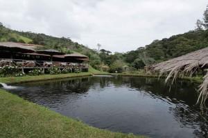 Santo-Antonio-do-Pinhal-Turismo-Rural-Sitio-Matao-_MG_6146-bx