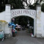 Bosque da Princesa– Pindamonhangaba