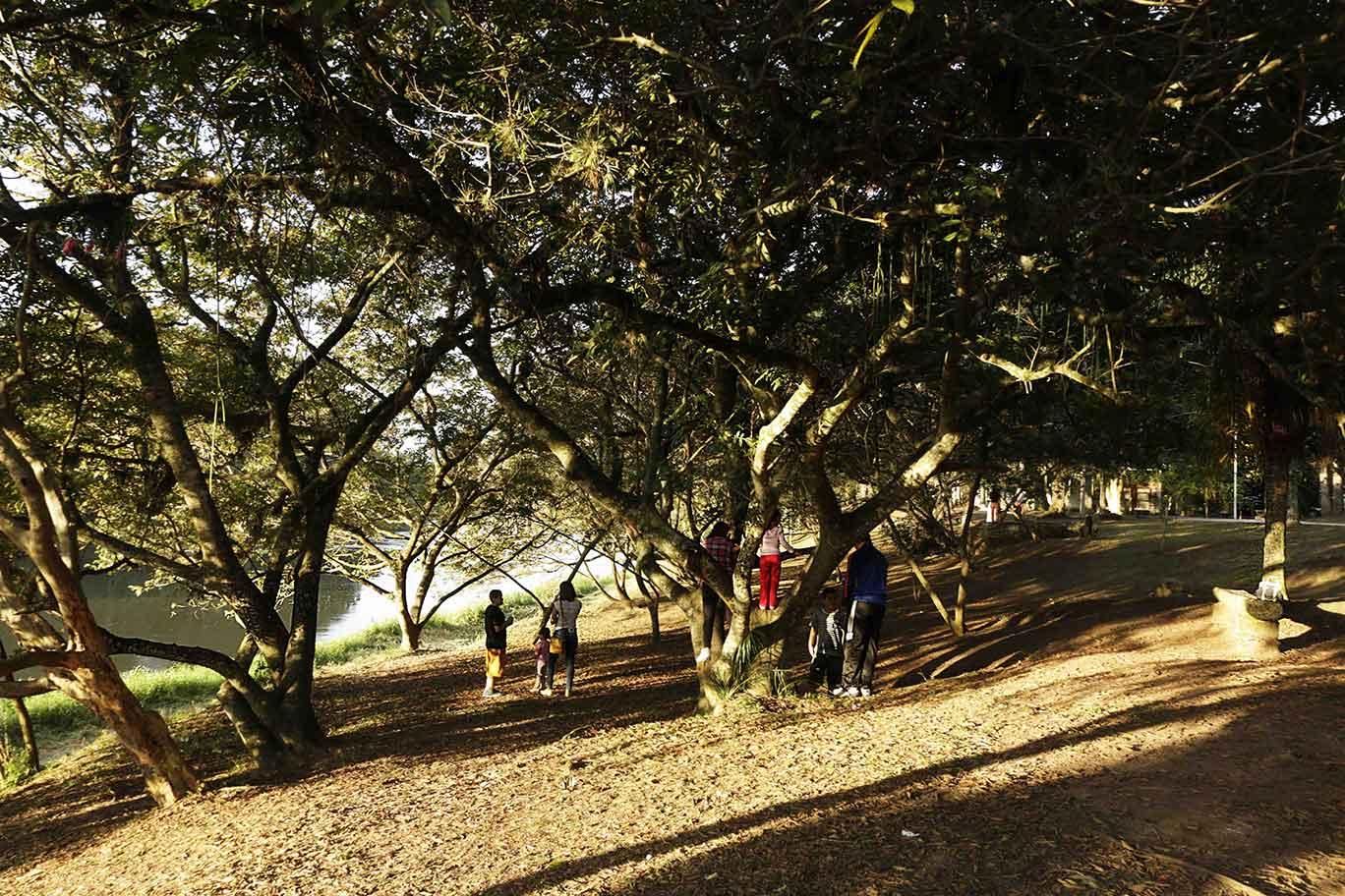 Bosque da Princesaem Pindamonhangaba -_MG_6929-bx