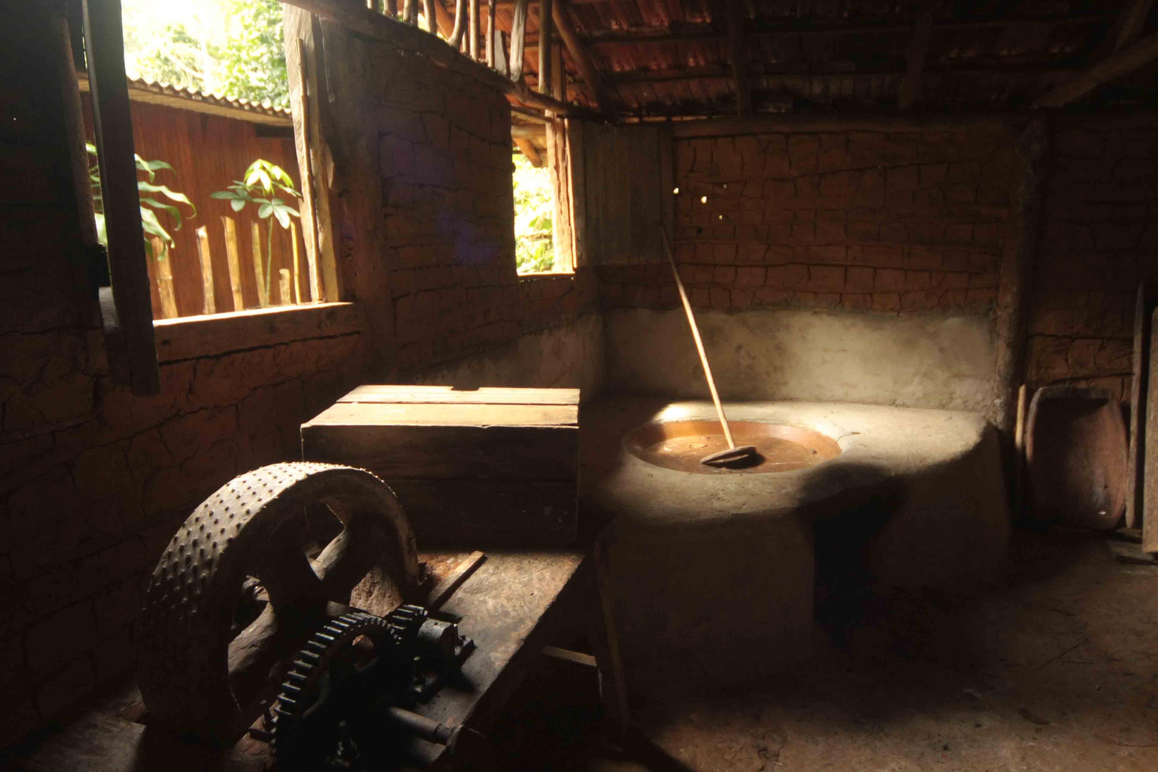 Ubatuba-cultura-comunidades-quilombo-368-bx