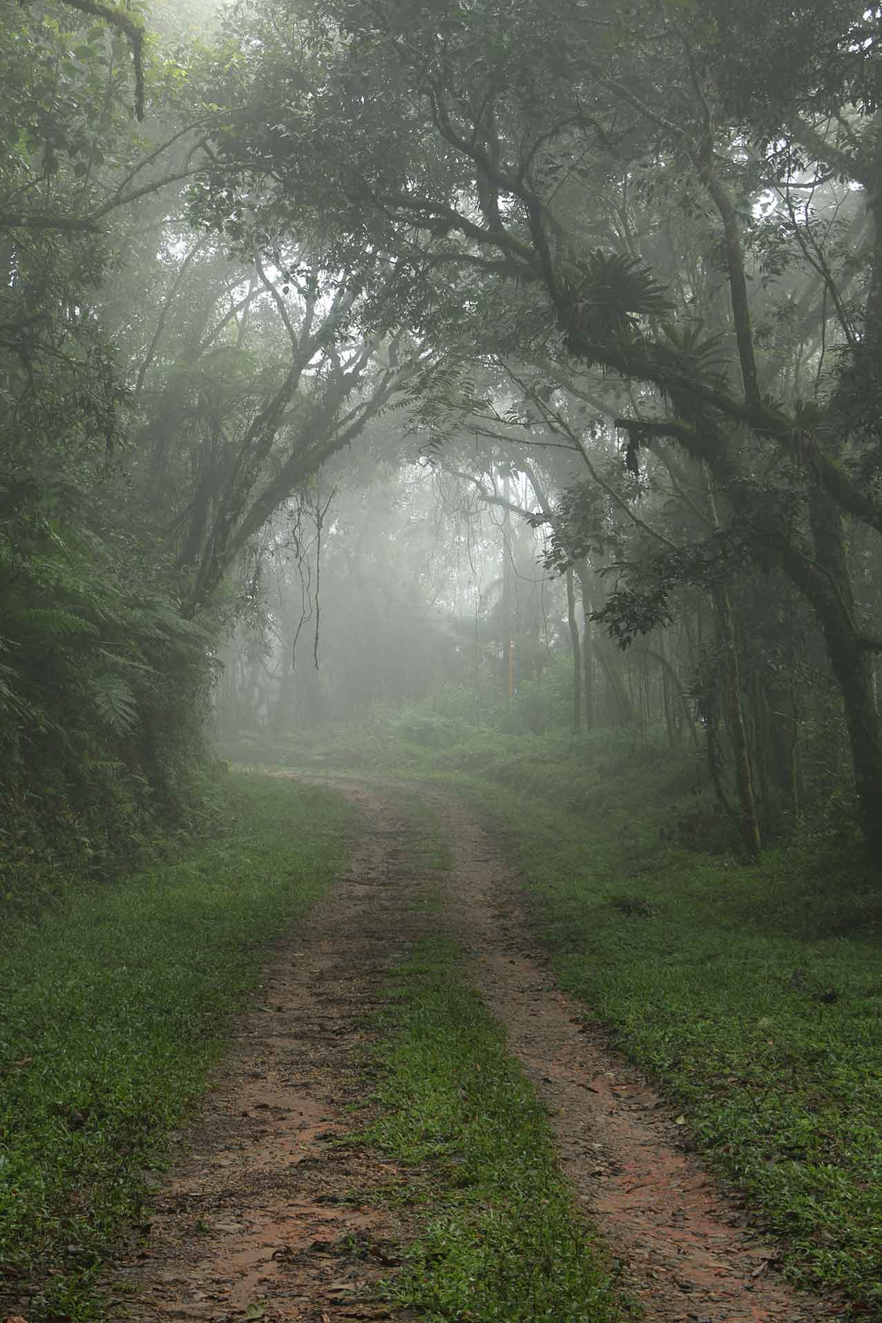 Marcio-Masulino-Extrema -Serra-do-Lopo-caminhos-IMG_5799-bx