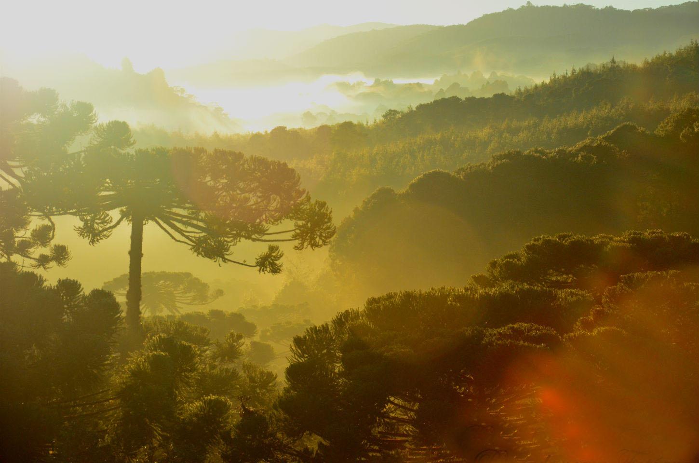 Monte Verde/MG