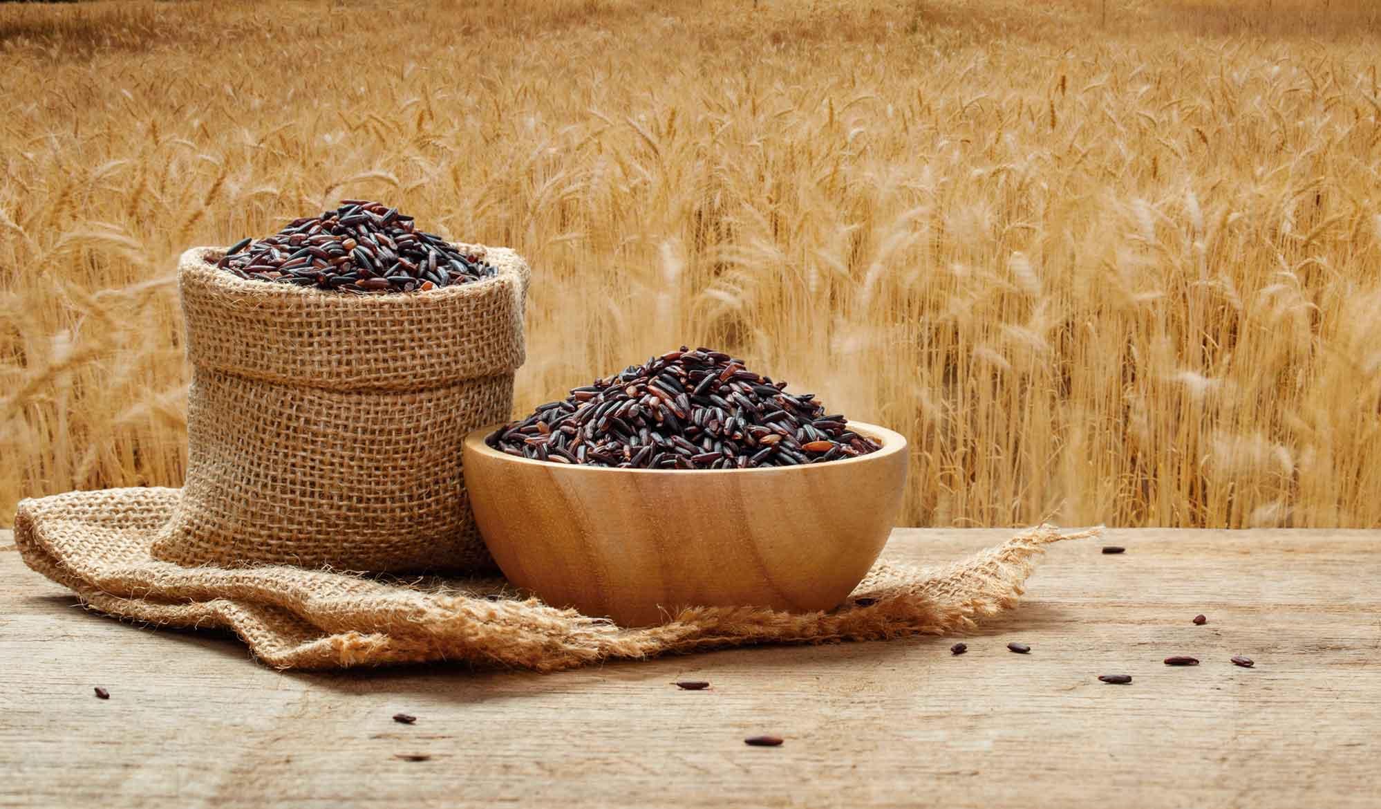 Mantiqueira-Aromas-e-Sabores-Arroz-Negro-bx