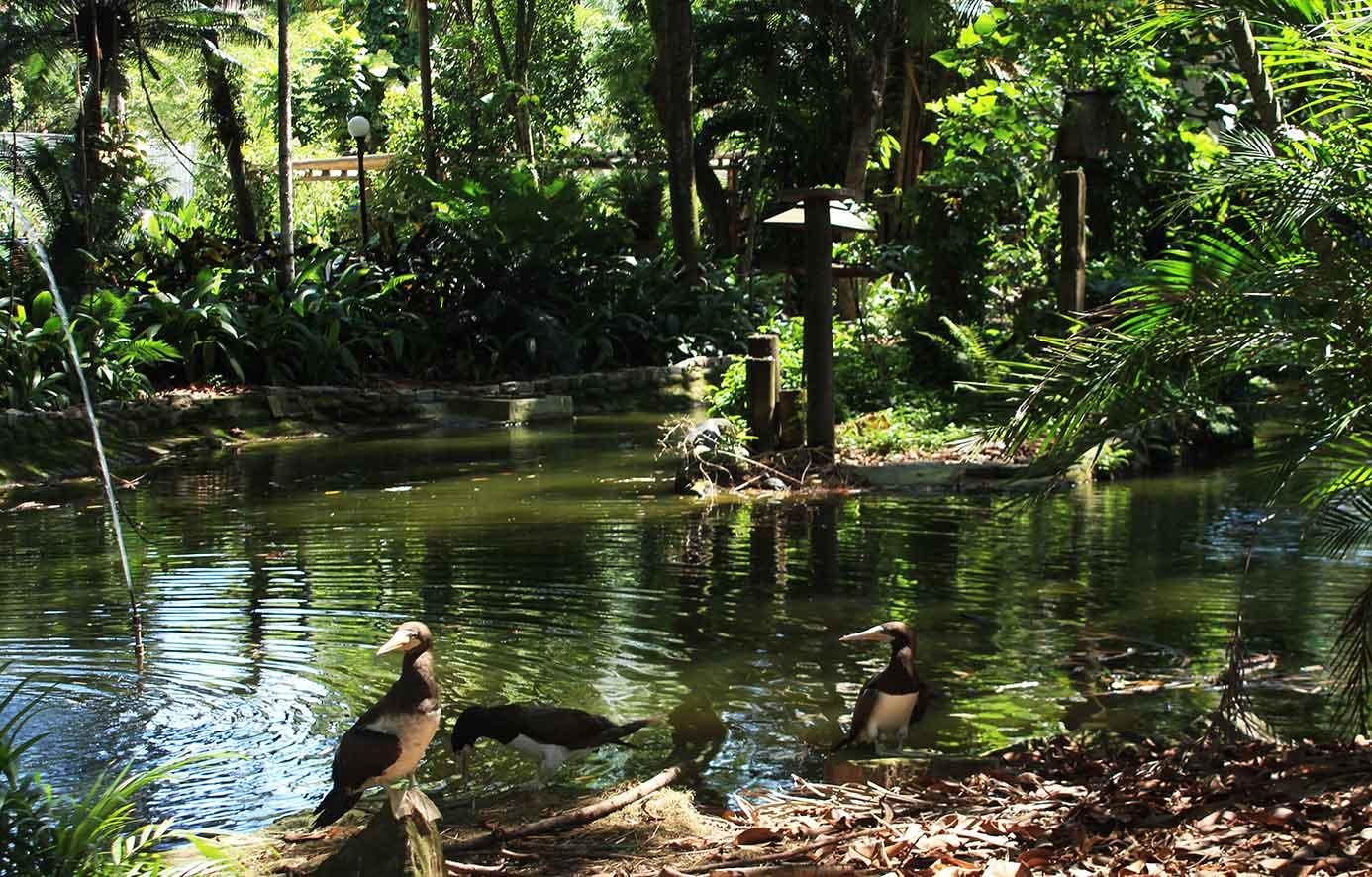 Parque Zoobotânico e Orquidário Municipal