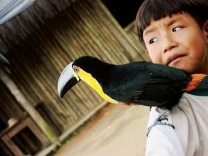 Sao-Sebastiao-Cultura-Indios-Tribo-Guarani-073-bx