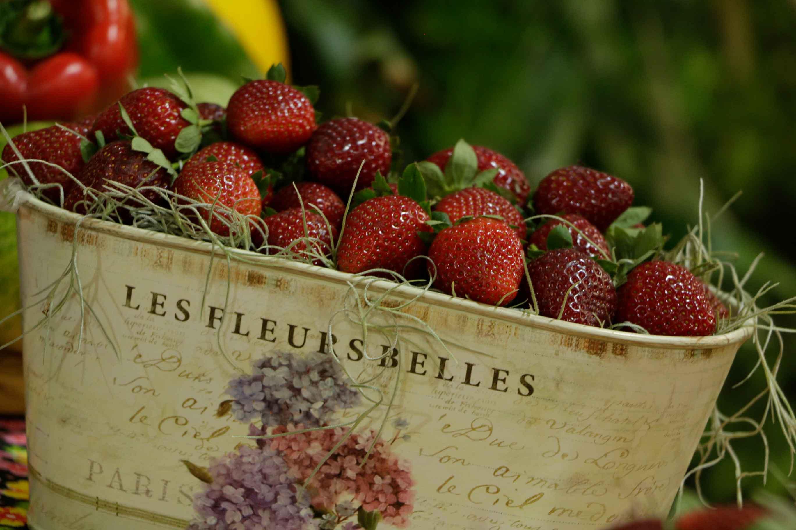 Festa de Flores e Morangos de Atibaia