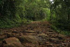 ilhabela-meio-ambiente-cachoeira-da-laje-004-bx