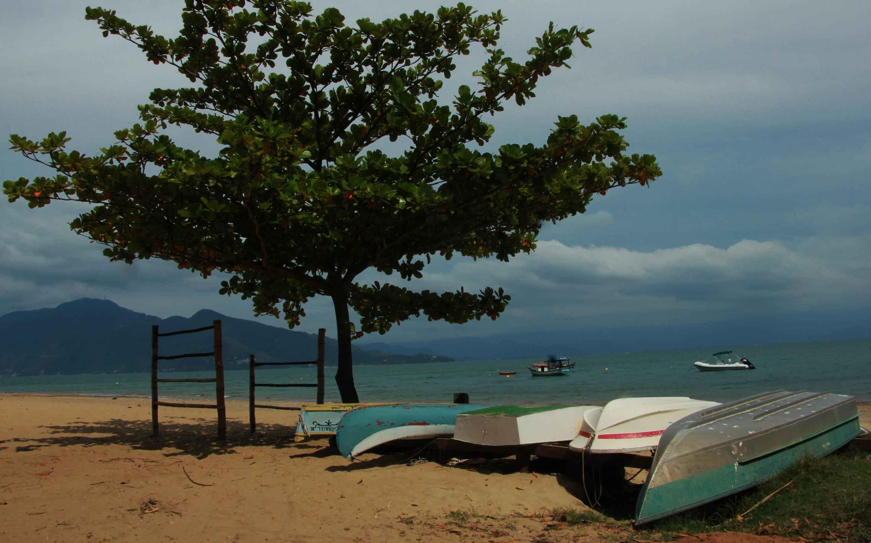 Praia da Armação. Foto: Marcio Masulino