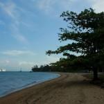 ilhabela-meio-ambiente-praia-do-engenho-dagua-centro-6-bx