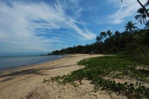 Praia de Garapocaia. Foto: Marcio Masulino