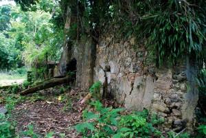 sao-sebastiao-historia-fazenda-santana-02-bx