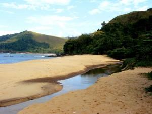 sao-sebastiao-meio-ambiente-Praia-de-Toque-Toque-1-bx