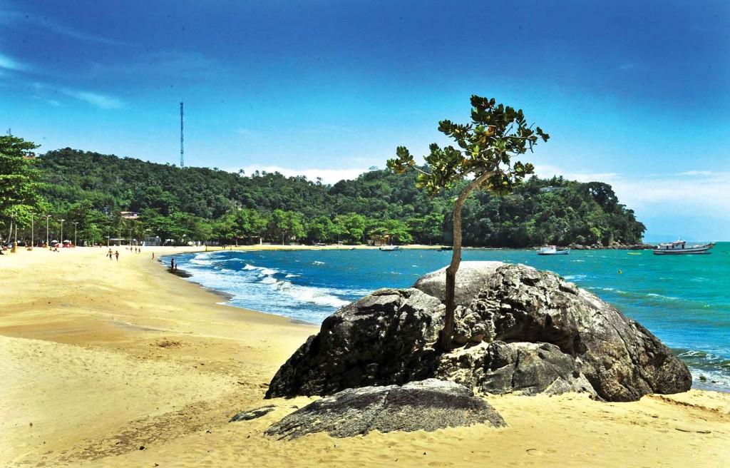 Praias de São Sebastião-meio-ambiente-praia-Praia-Cigarras-4-bx
