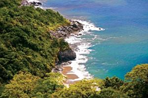 sao-sebastiao-meio-ambiente-praia-brava-Boicucanga-bx