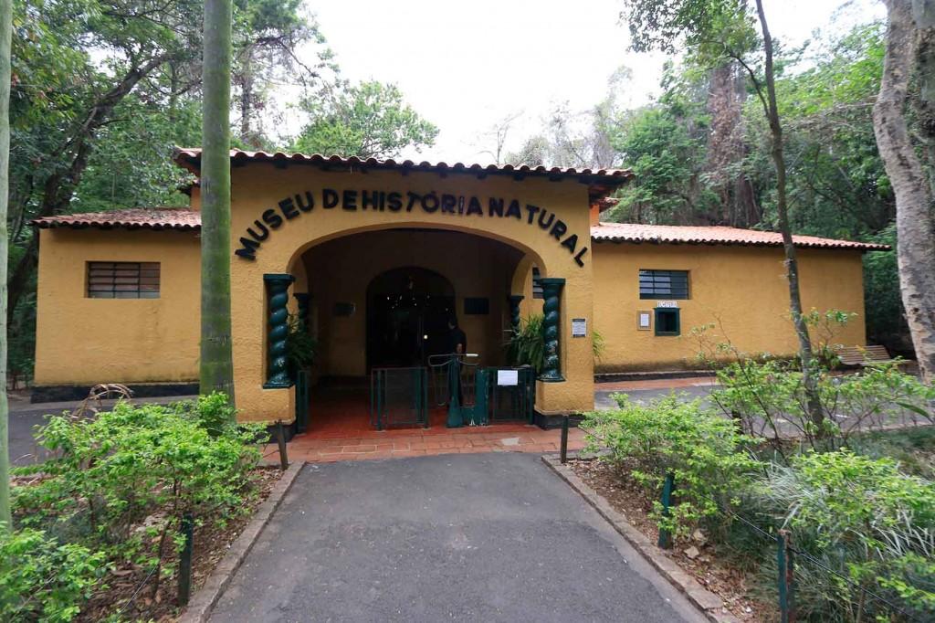 Museu de História Natural em Campinas-turismo-cultura-mg_0780-bx