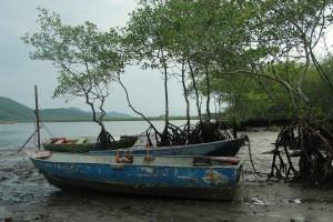 Caruara - último bairro que das divisa com Bertioga