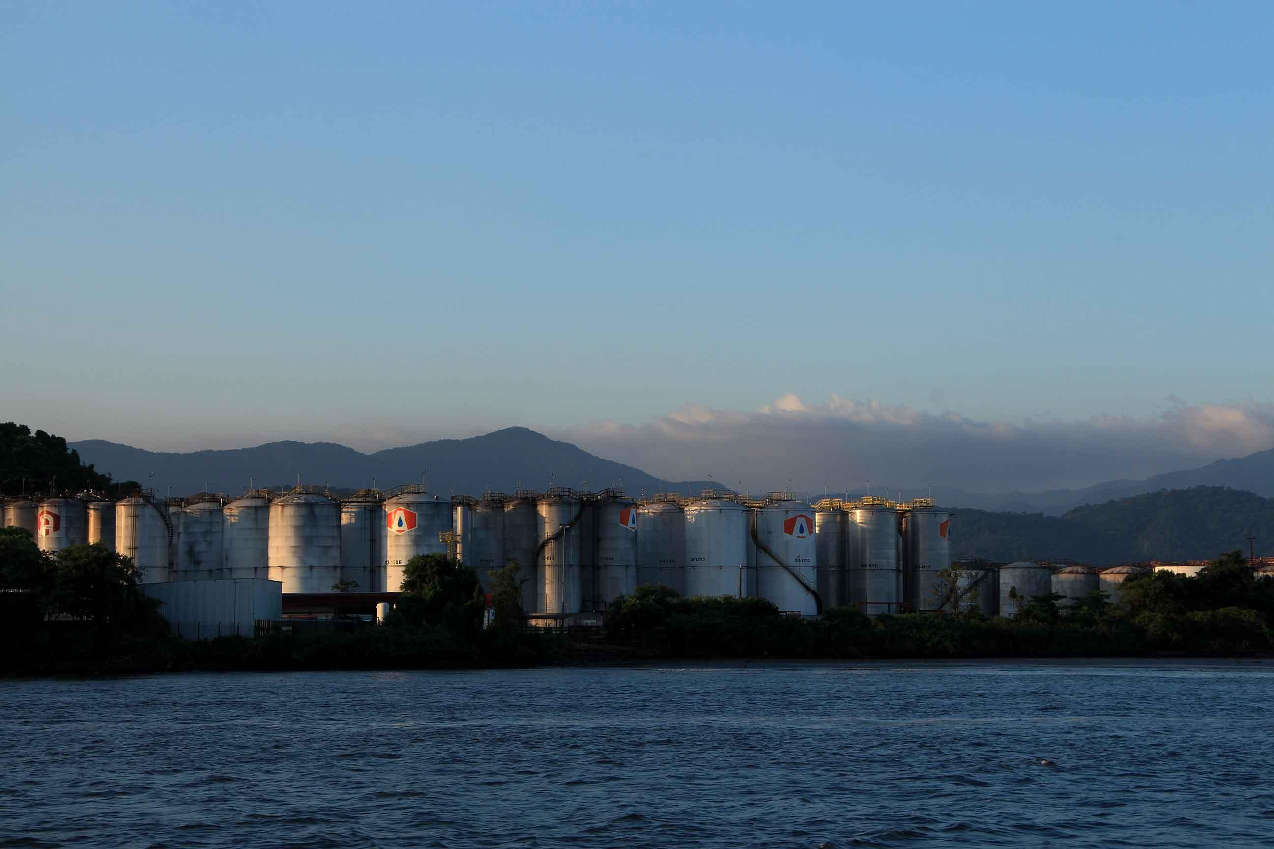 Ilhas de Santos - meio-ambiente-ilha-barnabe-img_5562-bx