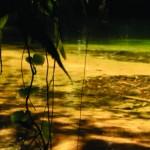 Poço Verde - Bairro Caruara