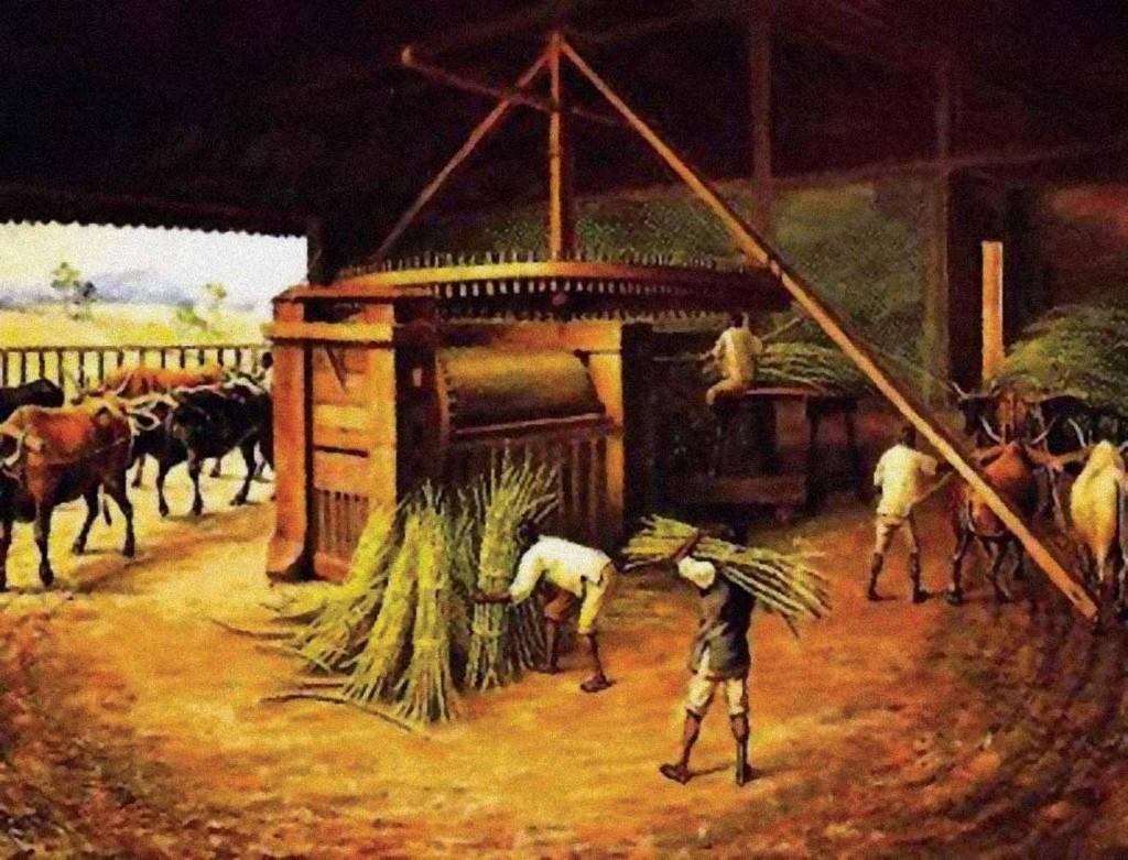 Ciclos históricos de Campinas