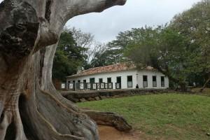 Fortalezas na Rio-Santos - IMG_3162-paraty-forte-defensor-perpetuo-bx