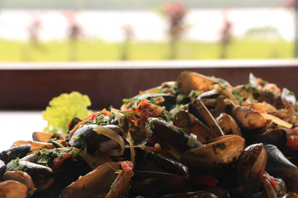 Maricultura em Caraguatatuba e Ilha Grande IMG_6513-mariscos-aromas-sabores-Rio-Santos-X-bx