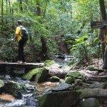 Caminhada em São Paulo: conheça trilhas incríveis