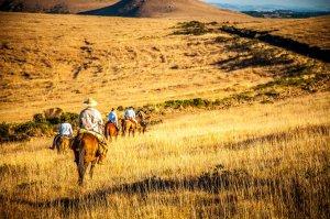 Cavalgada nas Serras Catarinense e Gaúcha