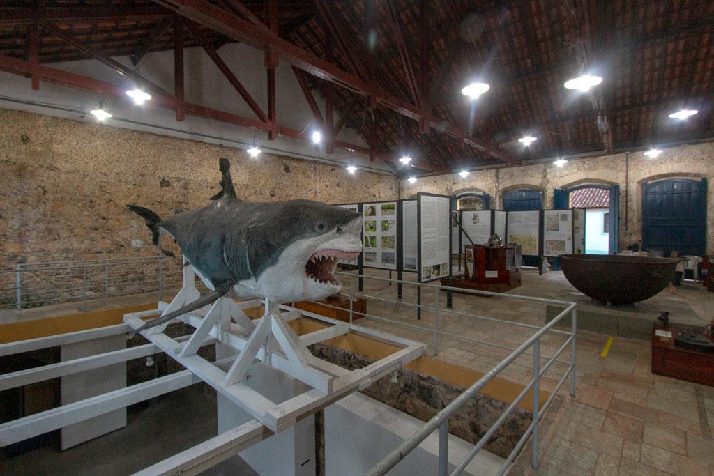 Museu de Cananeia