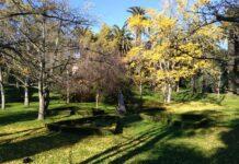 Jardim Botânico Tropical em Lisboa